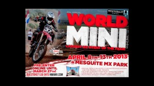World Mini Mesquite MX